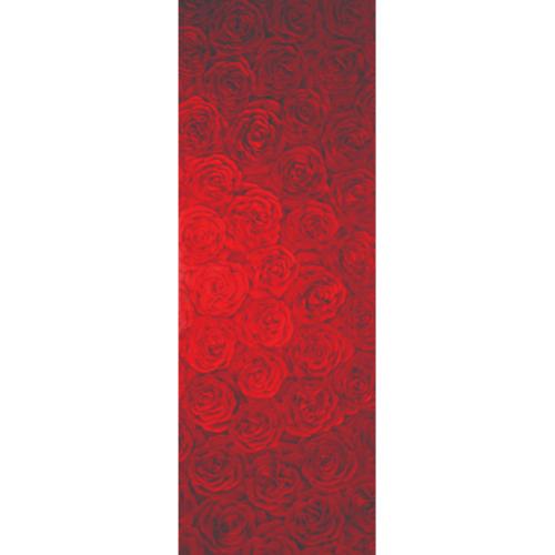 MAZTERDOOR กระจก ขนาด (56x162.5 cm.)  Master-001