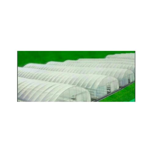 ENVI-GREEN ผ้าพลาสติกโรงเรือน  UV7  ขนาด 3.5ม.x100ม.x0.10มม.สีใส